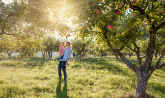 The apple doesn't fall far from the tree, Attachment Theory